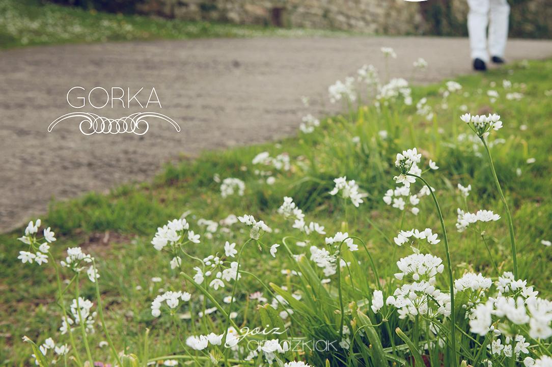 Gorka_ext-29R